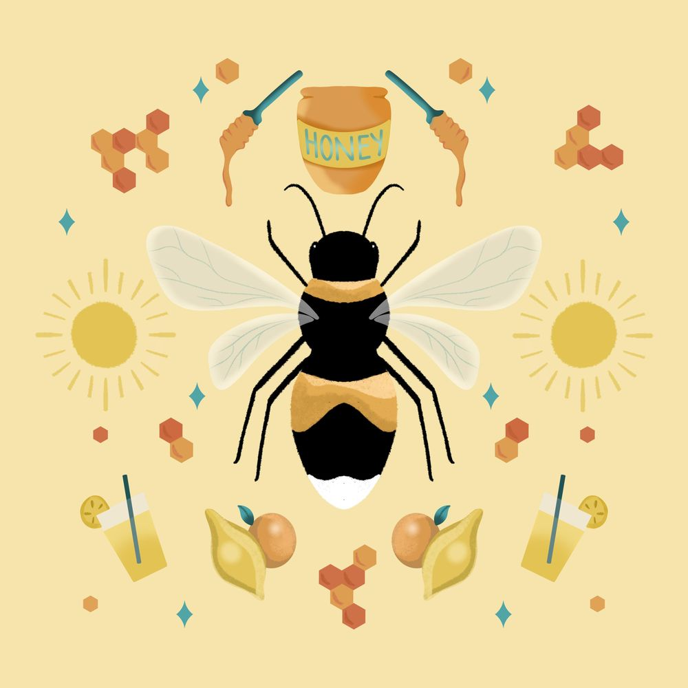 Fun with Symmetry - Honey Bee - image 1 - student project