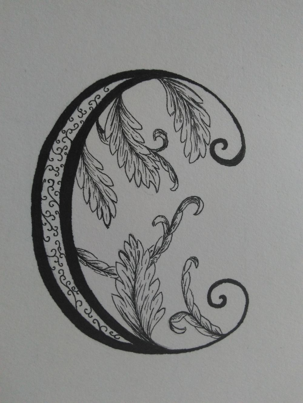 Ornamented Capitals with acanthus - image 4 - student project