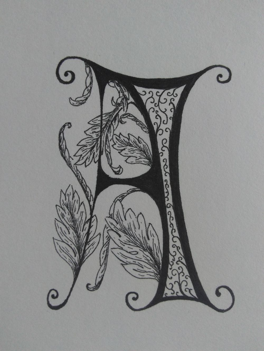 Ornamented Capitals with acanthus - image 3 - student project
