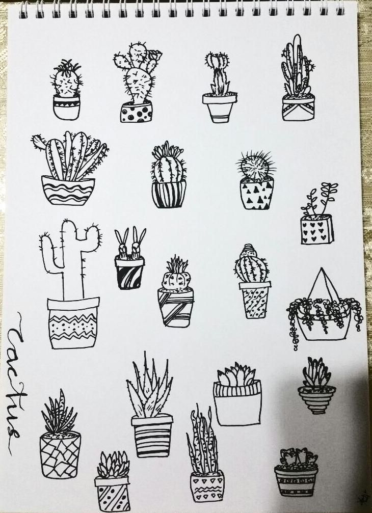 First attempt at line drawing - image 1 - student project