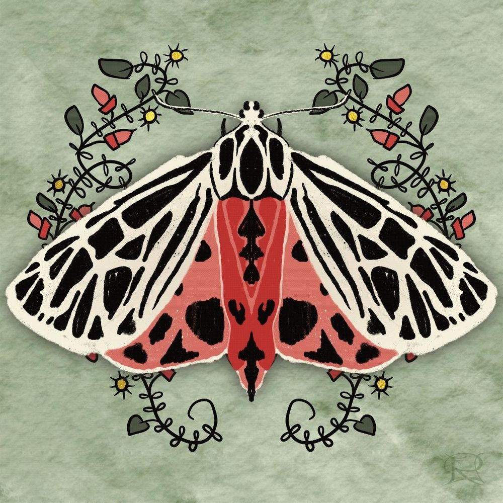Believe Moth - image 1 - student project