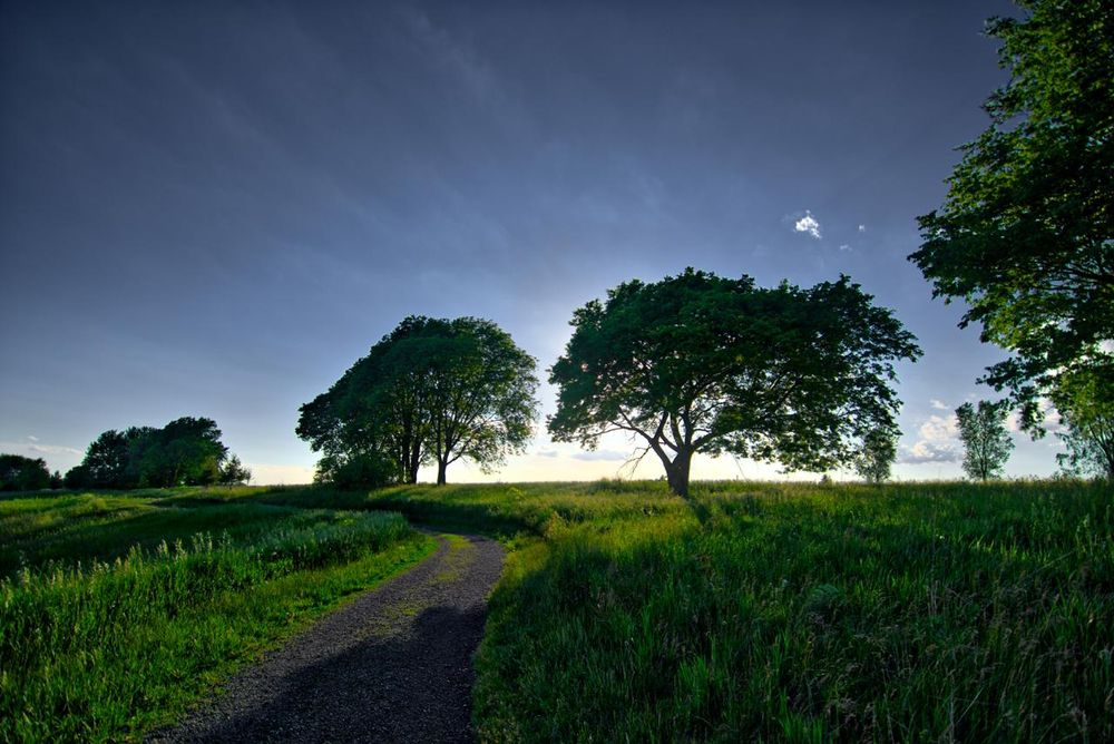 Iowa in the Summertime - image 3 - student project