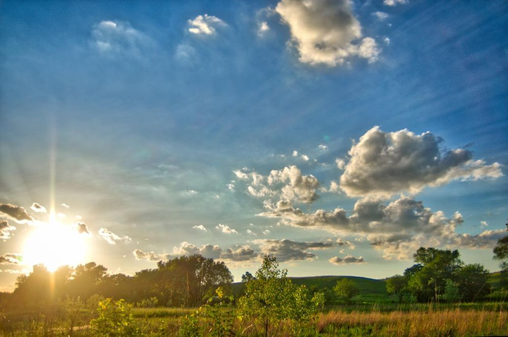 Iowa in the Summertime - image 2 - student project