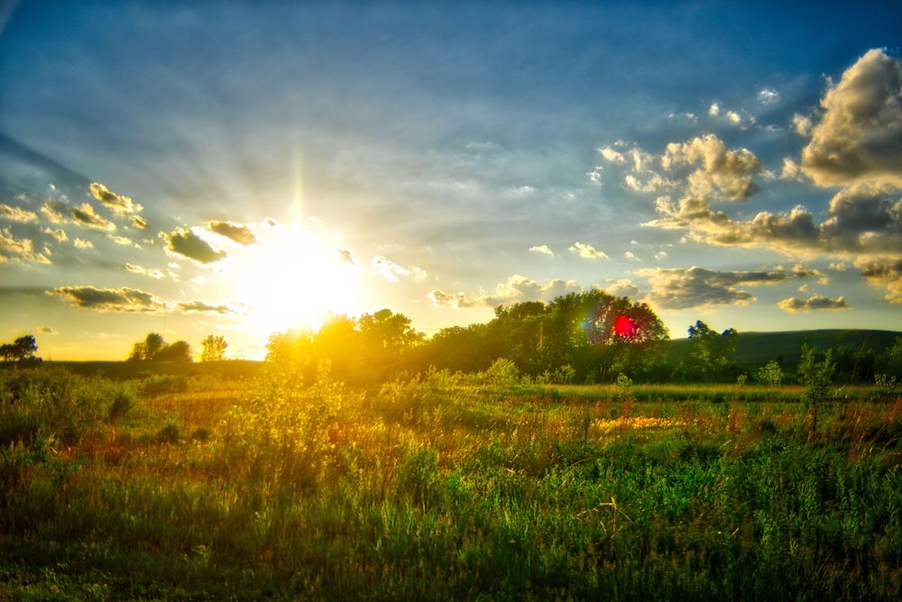 Iowa in the Summertime - image 1 - student project