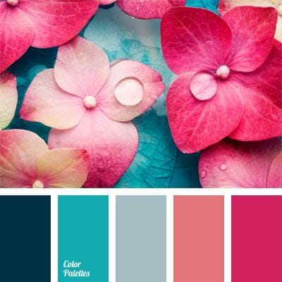 Flower colors - image 2 - student project
