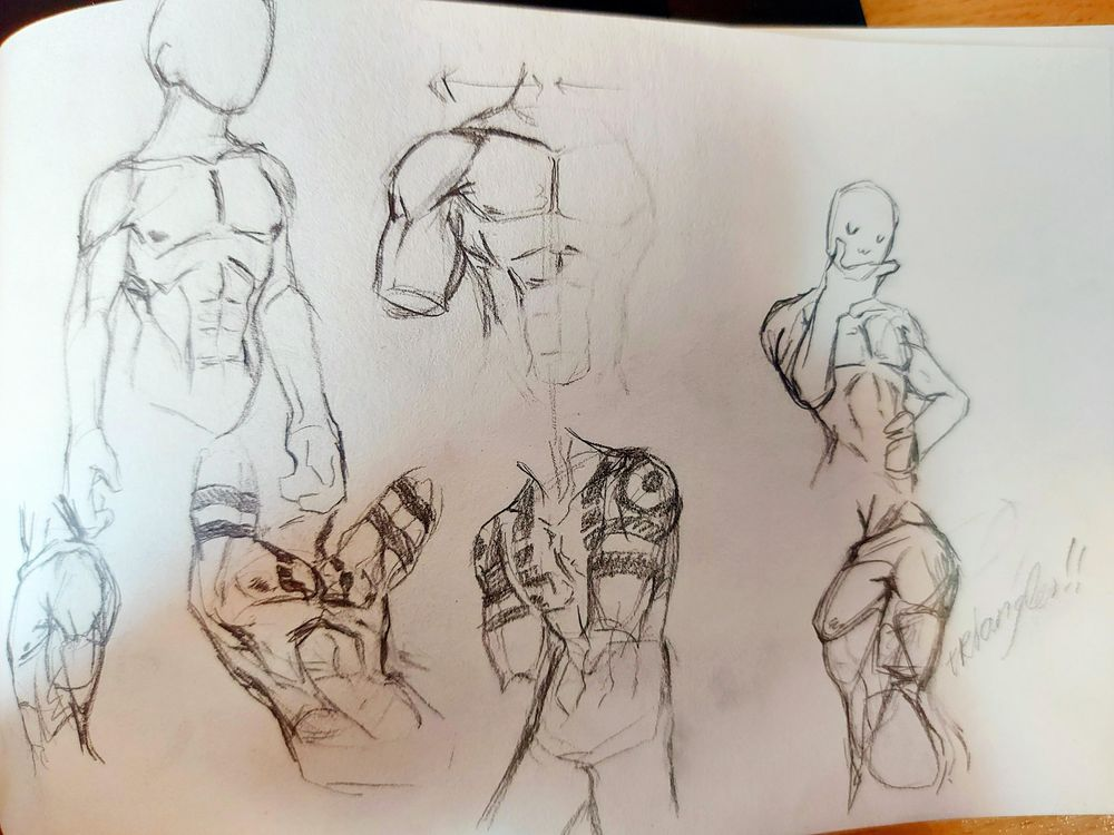 smooch. Torso anatomy practice - image 2 - student project
