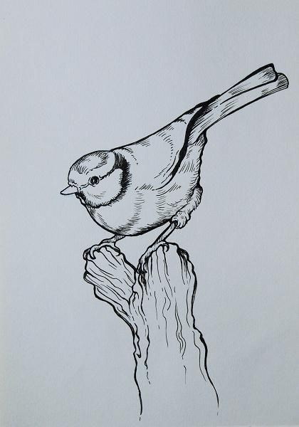 From pencil to ink to watercolor - image 2 - student project