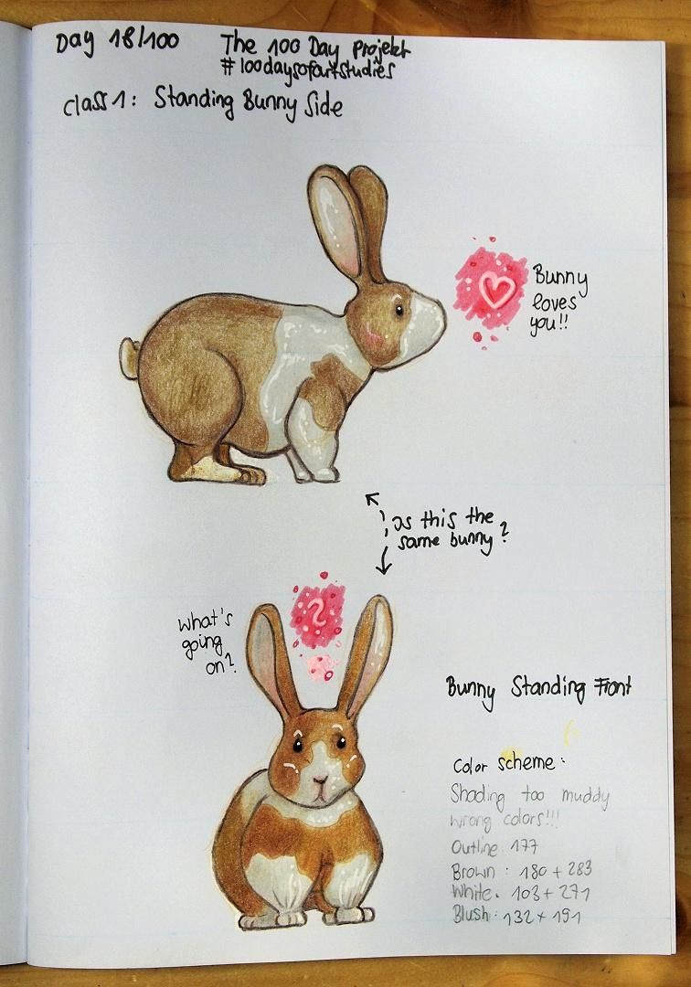 More bunnies to come! - image 1 - student project