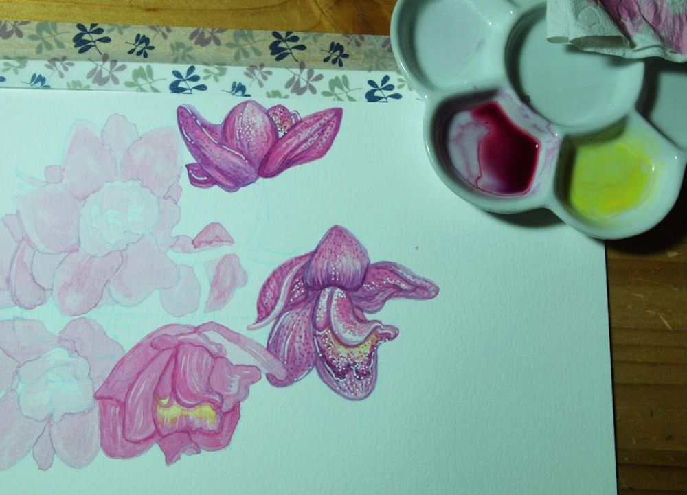 Watercolor orchids - image 1 - student project