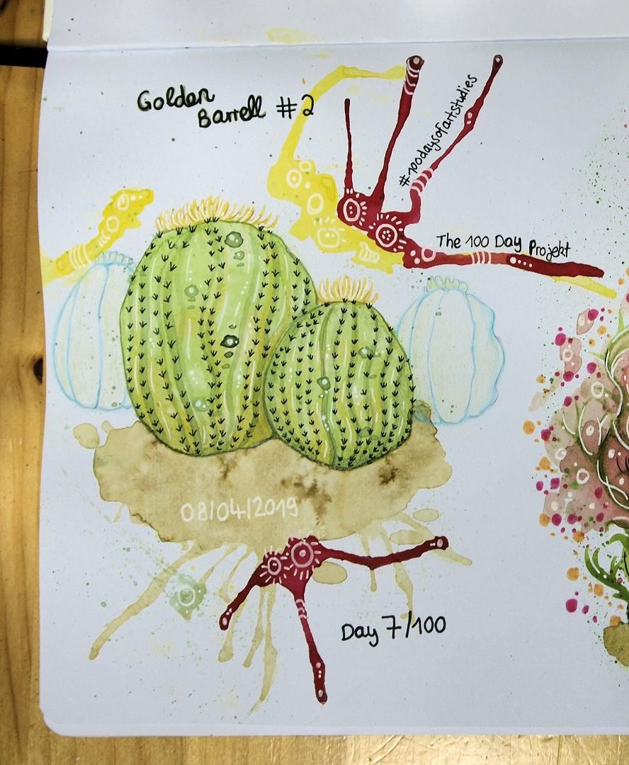 Practising watercolor one cactus at a time... - image 2 - student project