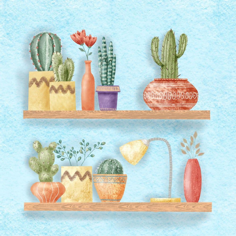 Cactus Shelf Garden - image 1 - student project