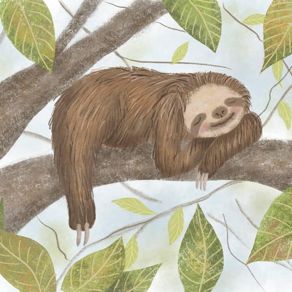 Sleepy Little Sloth - image 1 - student project