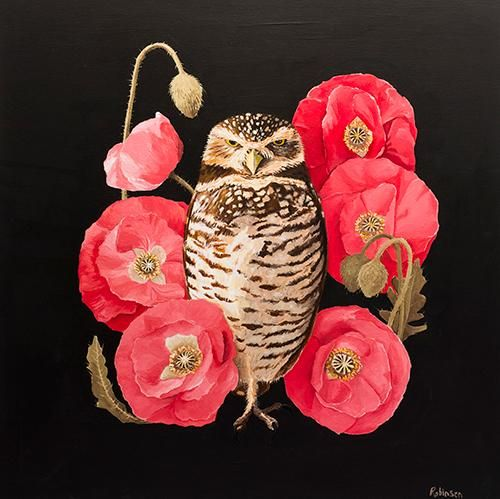 Burrowing Owl - image 1 - student project