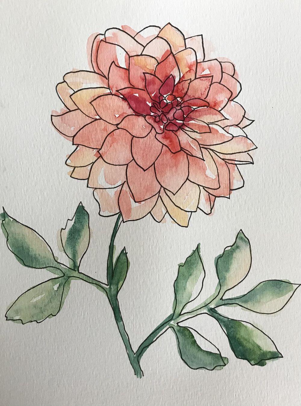 Watercolour dahlias - image 1 - student project