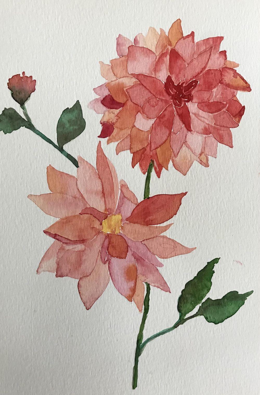 Watercolour dahlias - image 3 - student project