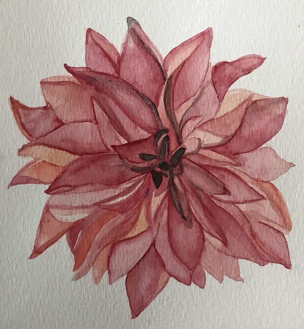 Watercolour dahlias - image 2 - student project