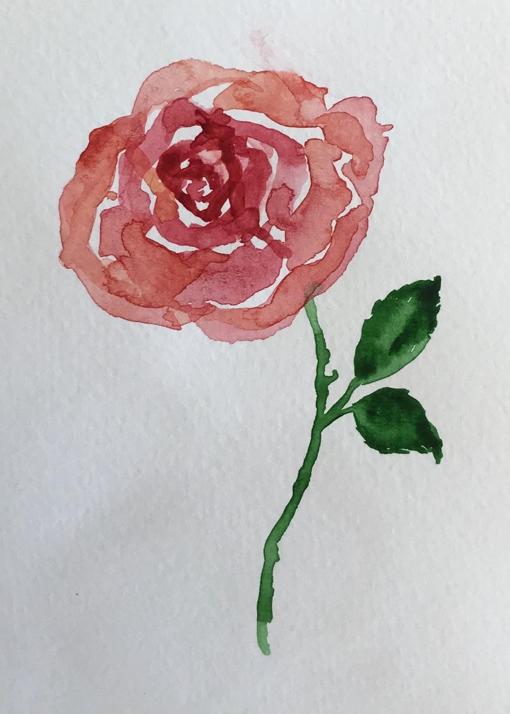 Watercolour roses - image 2 - student project