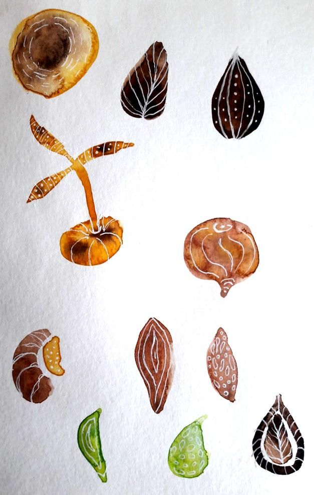 Seeds! - image 2 - student project