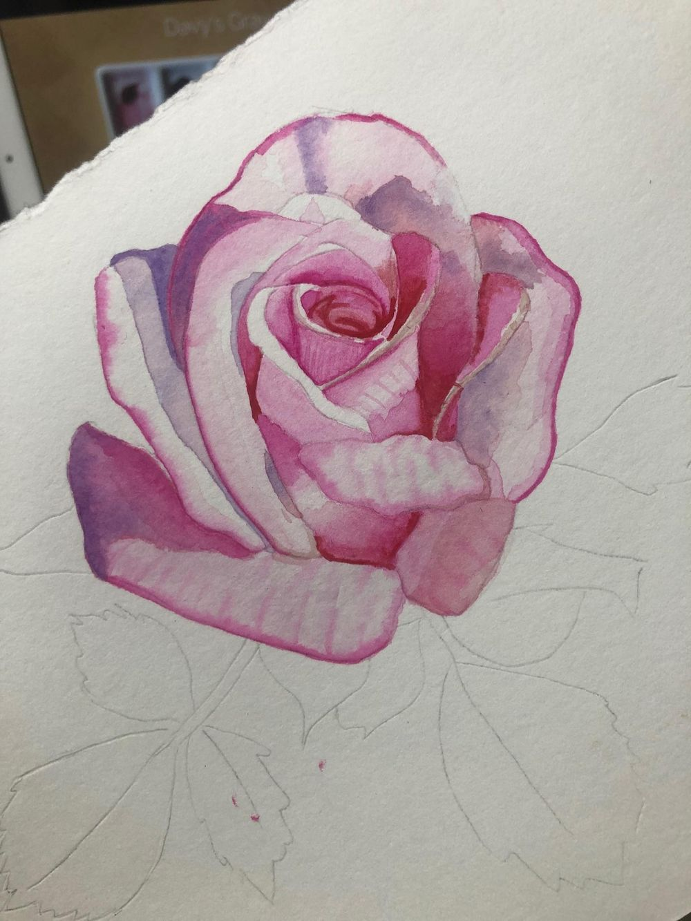 Opera rose - image 2 - student project