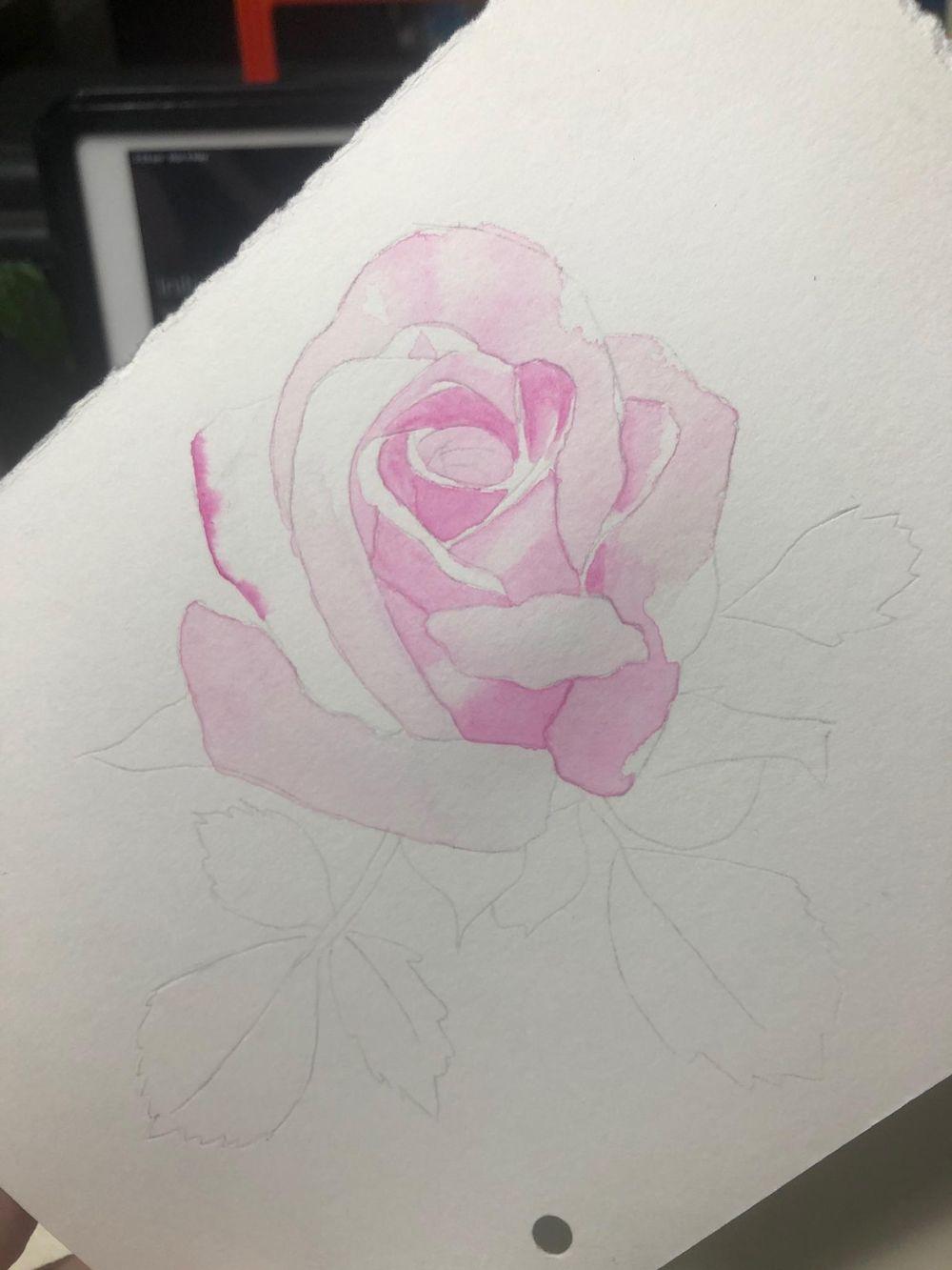 Opera rose - image 3 - student project