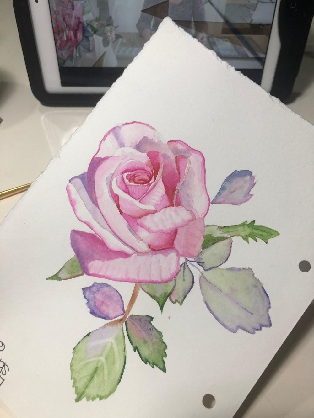 Opera rose - image 1 - student project