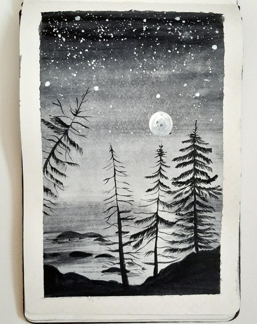 Pine tree magic.... - image 2 - student project