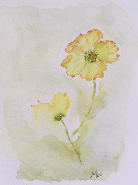 My poppy - image 1 - student project