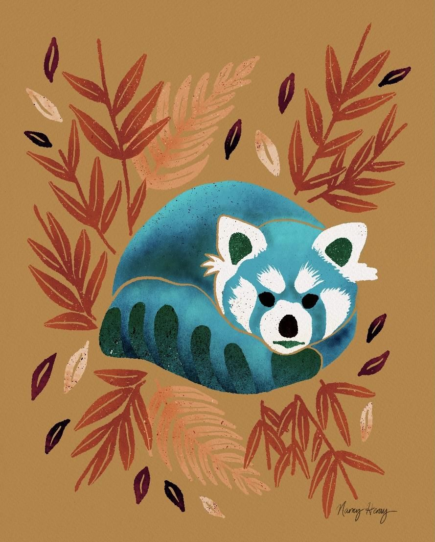 Red Panda - image 1 - student project