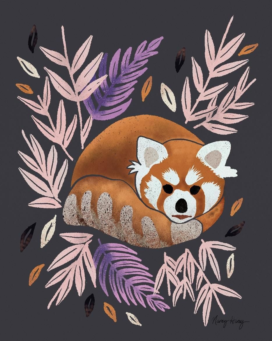 Red Panda - image 3 - student project
