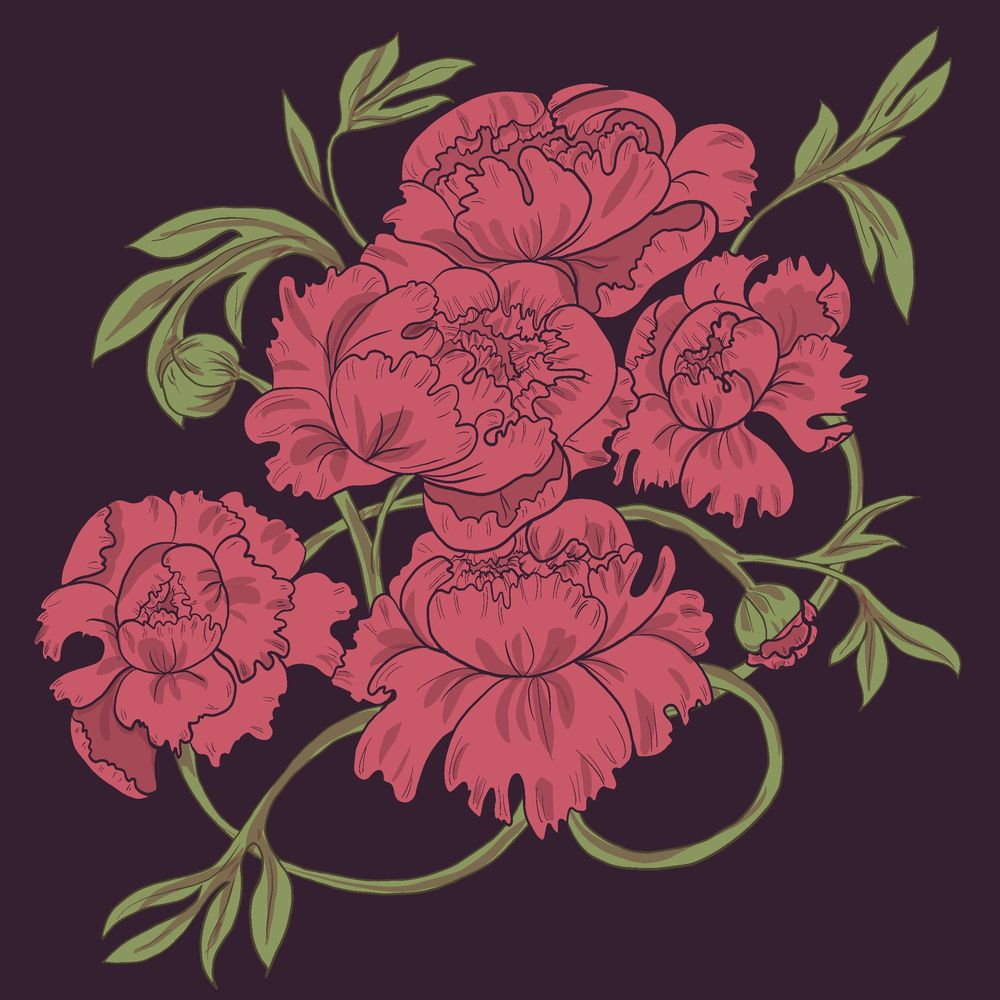 Peony & Violet - image 2 - student project