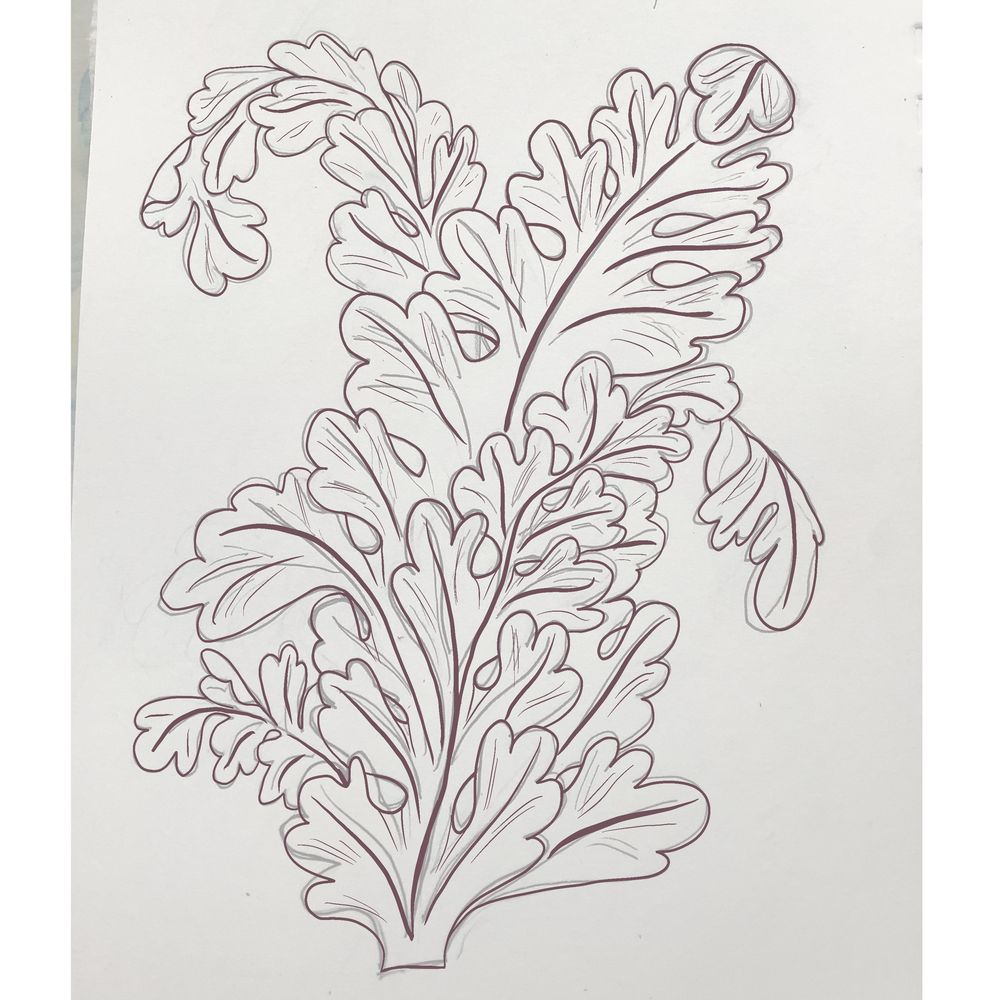 Acanthus Practice - image 4 - student project
