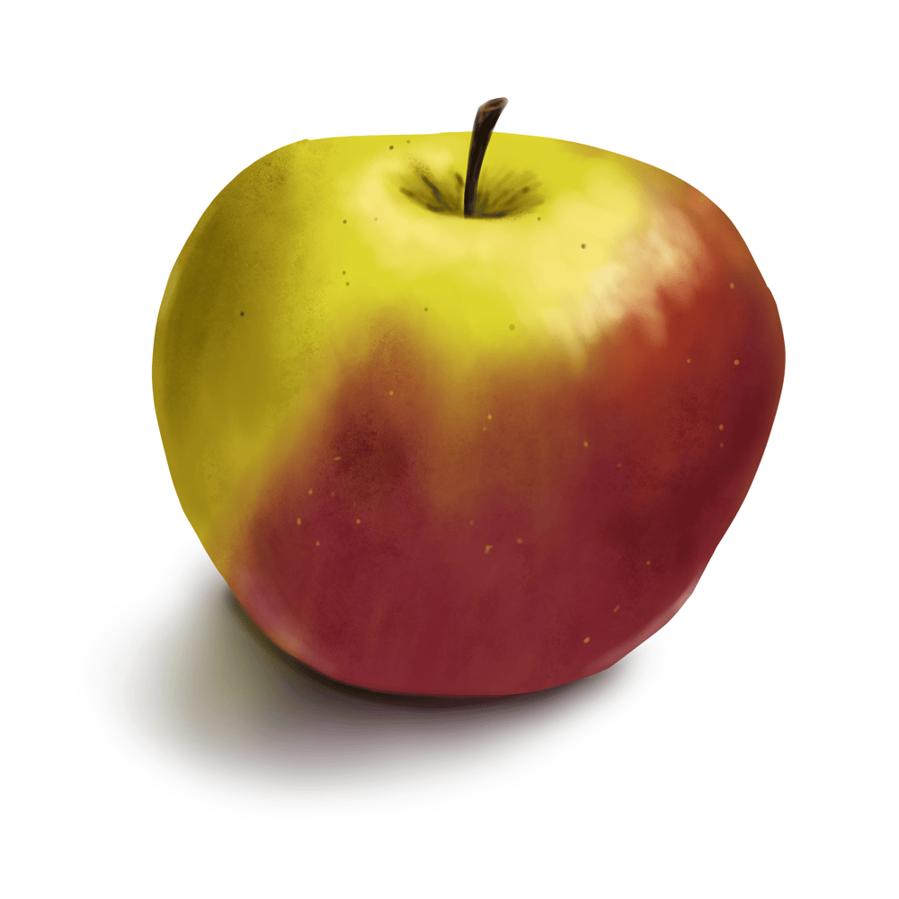 Apple - image 1 - student project