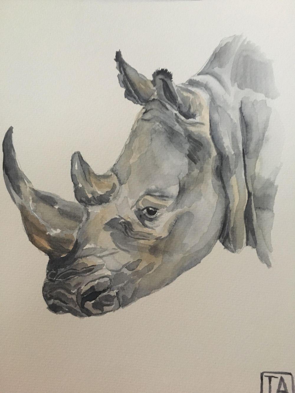 Rhinocerous - image 1 - student project