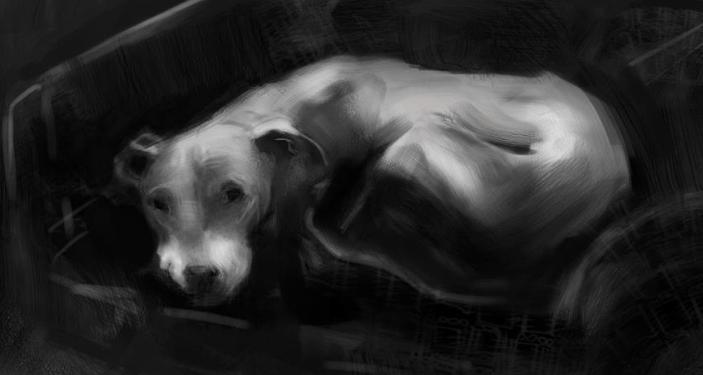 Dog Tattoo - image 2 - student project