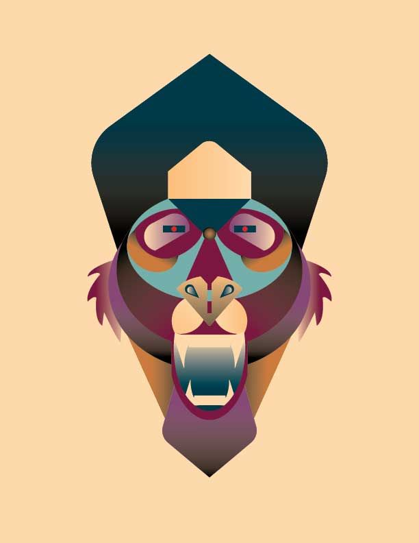 Baboon - image 1 - student project