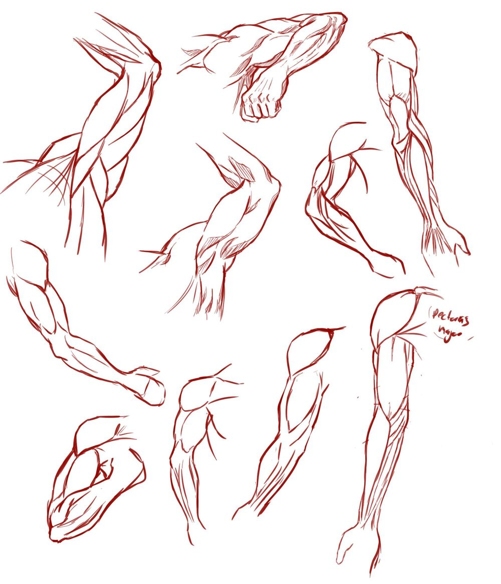 Arms! - image 1 - student project
