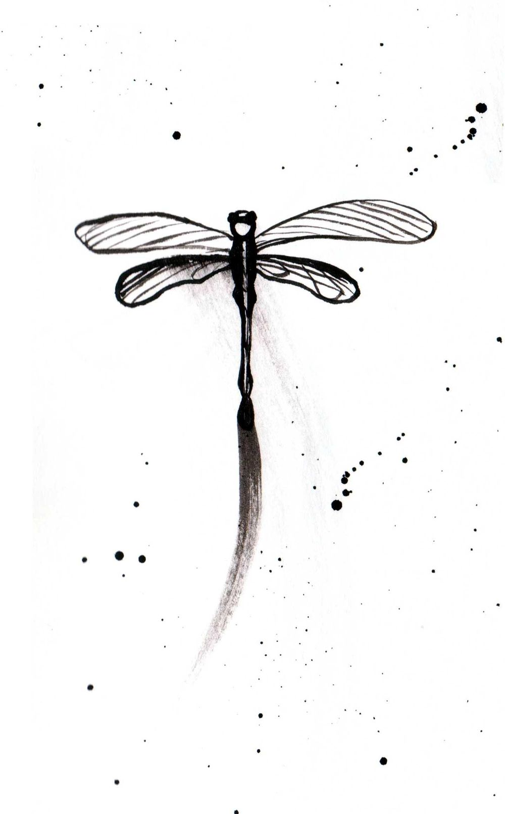 Dragonflies - image 3 - student project