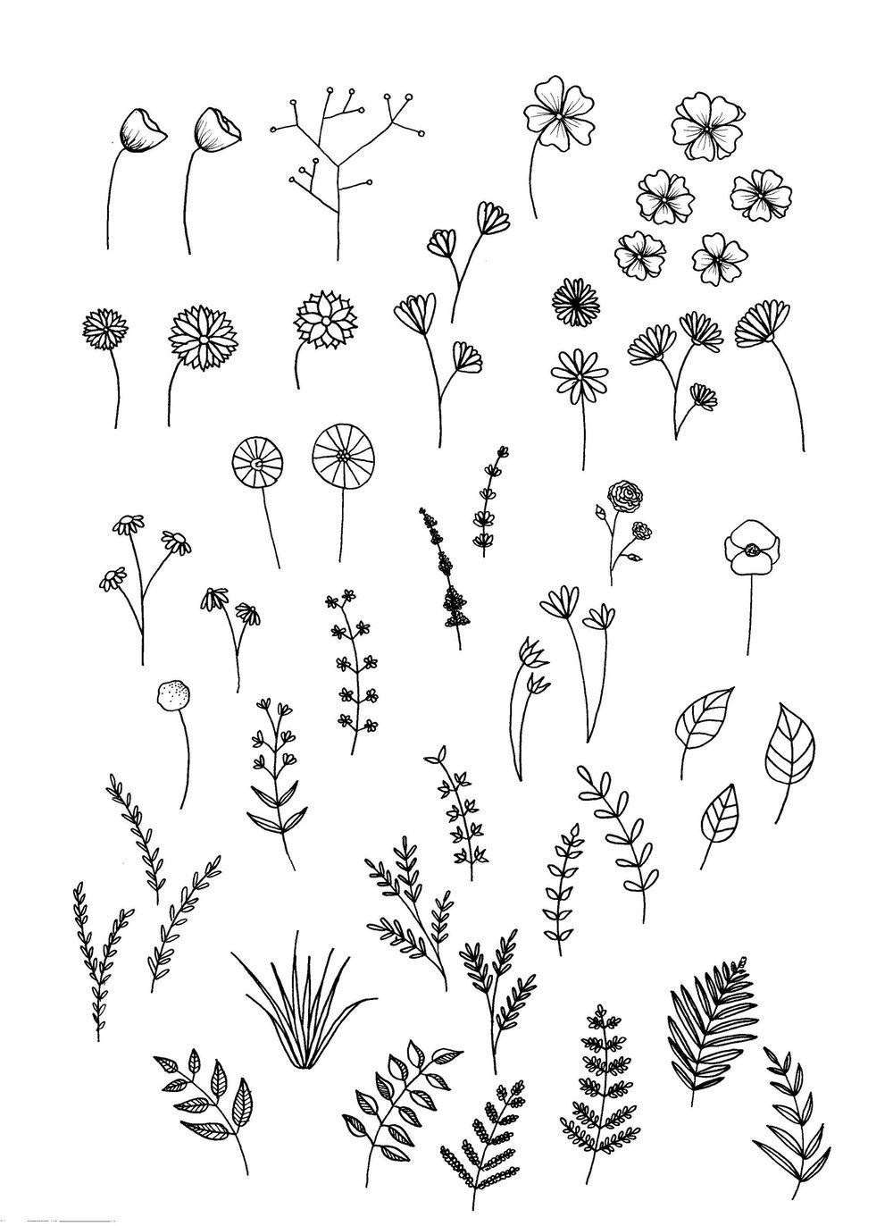 flower and leaf doodles - image 5 - student project