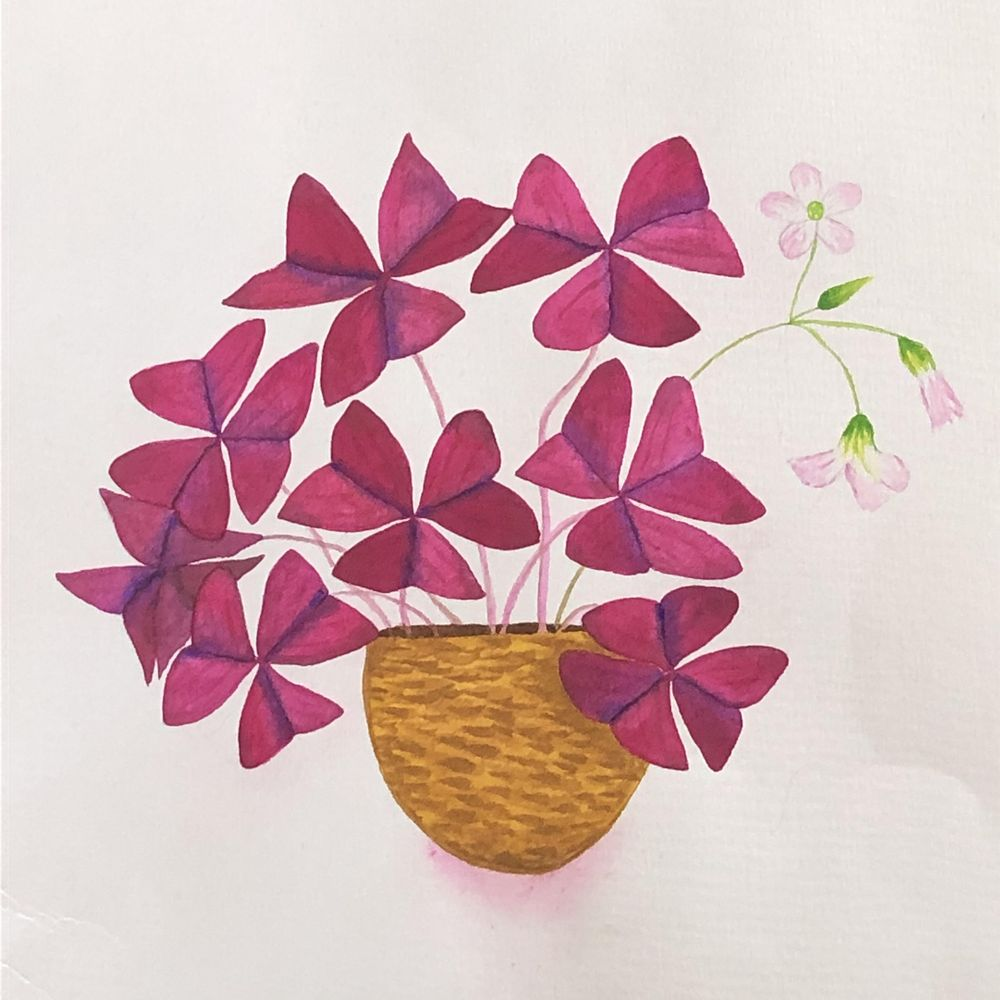 Watercolor Leaves and Oxalis - image 3 - student project