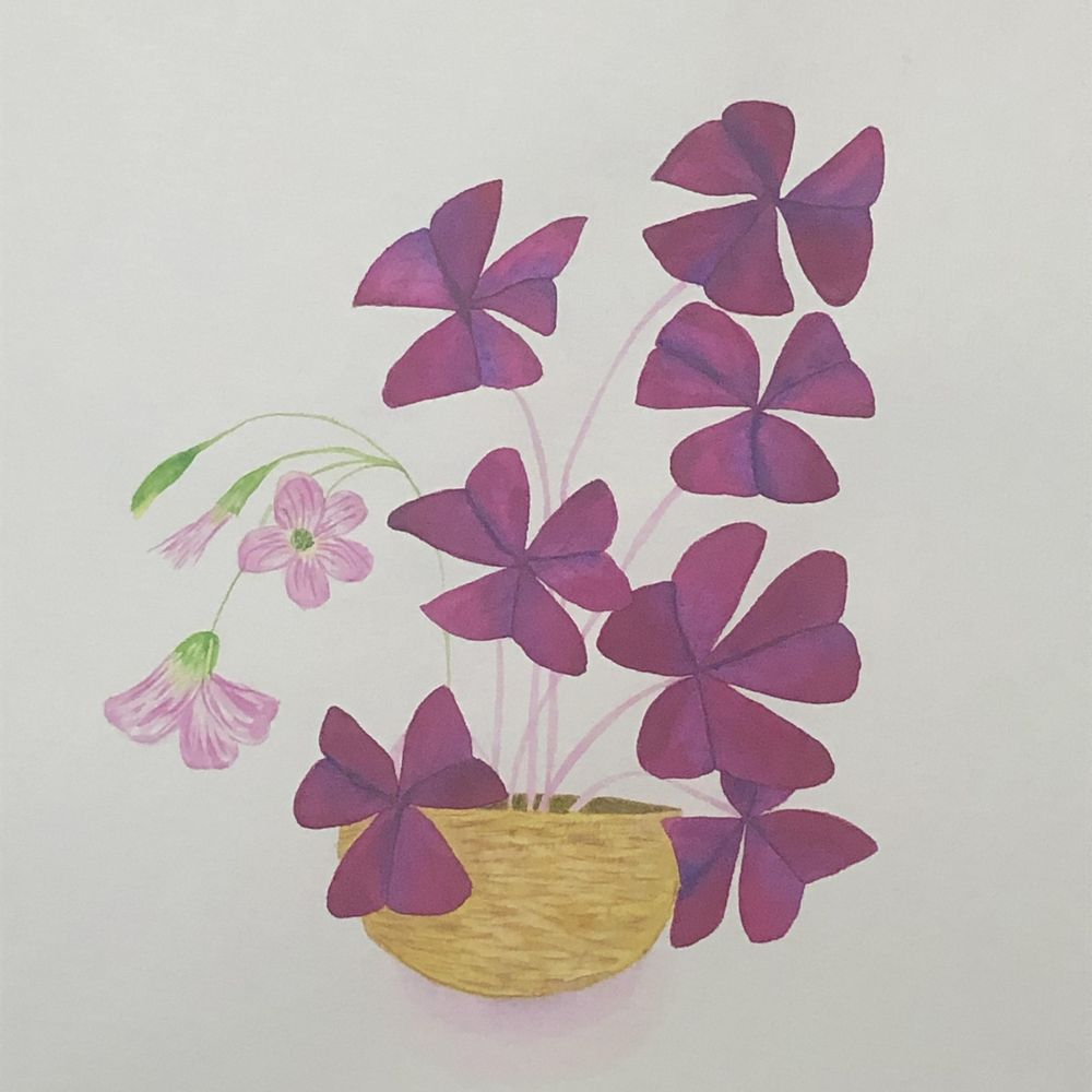 Watercolor Leaves and Oxalis - image 2 - student project