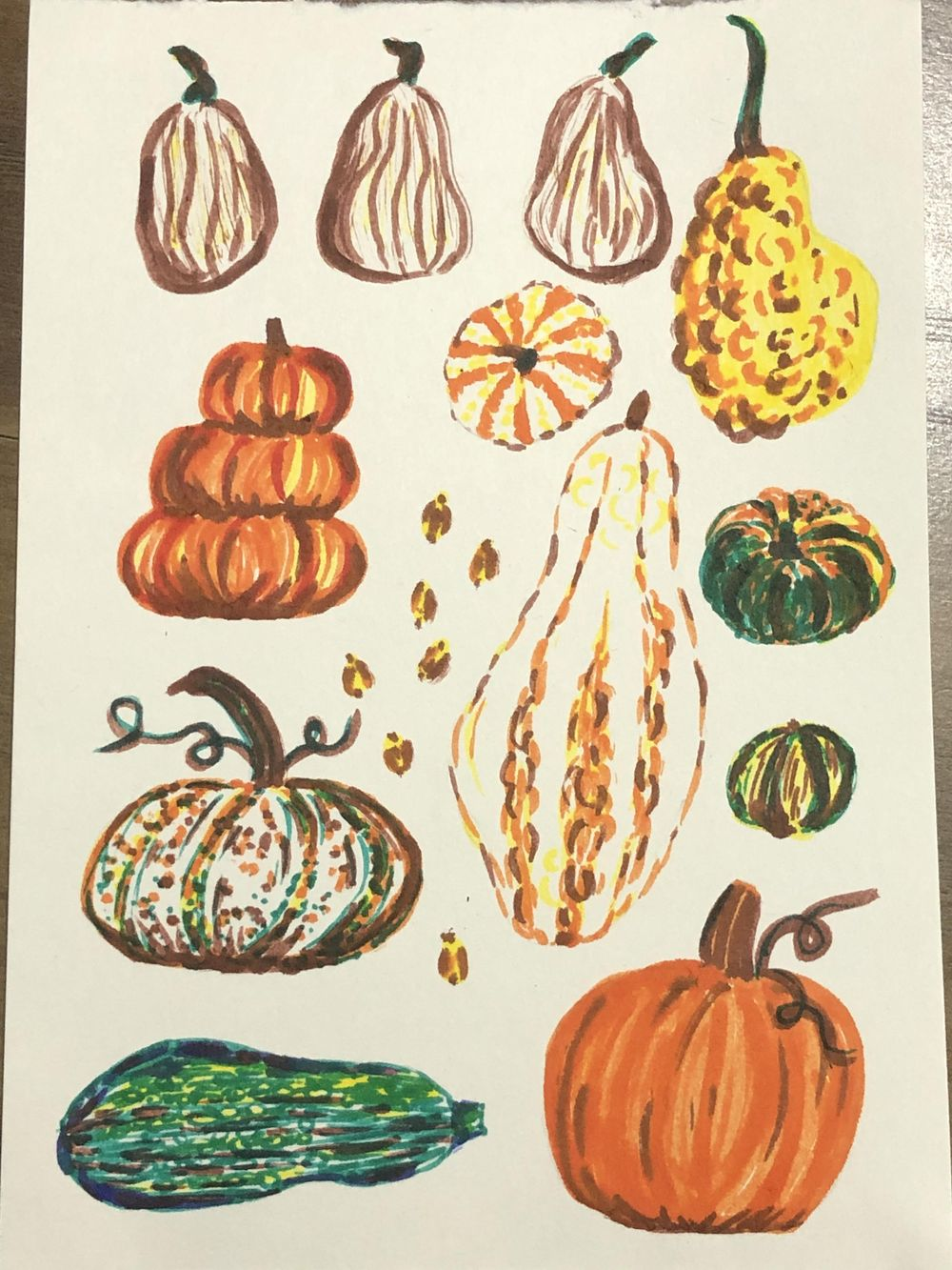 Pumpkins and gourds with markers - image 1 - student project