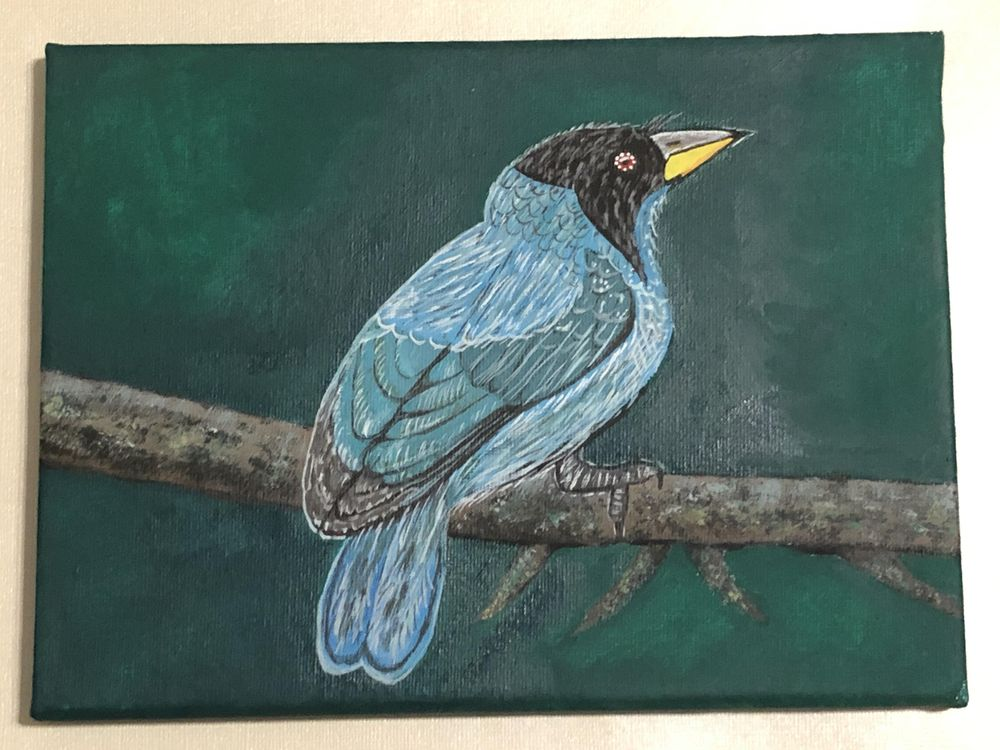 Blue Bird in Acrylics - image 1 - student project