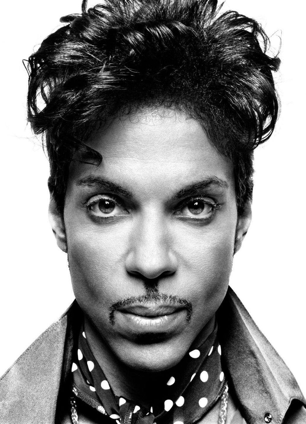 Prince pencil drawing - image 2 - student project