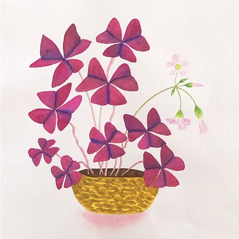 Watercolor Leaves and Oxalis - image 4 - student project