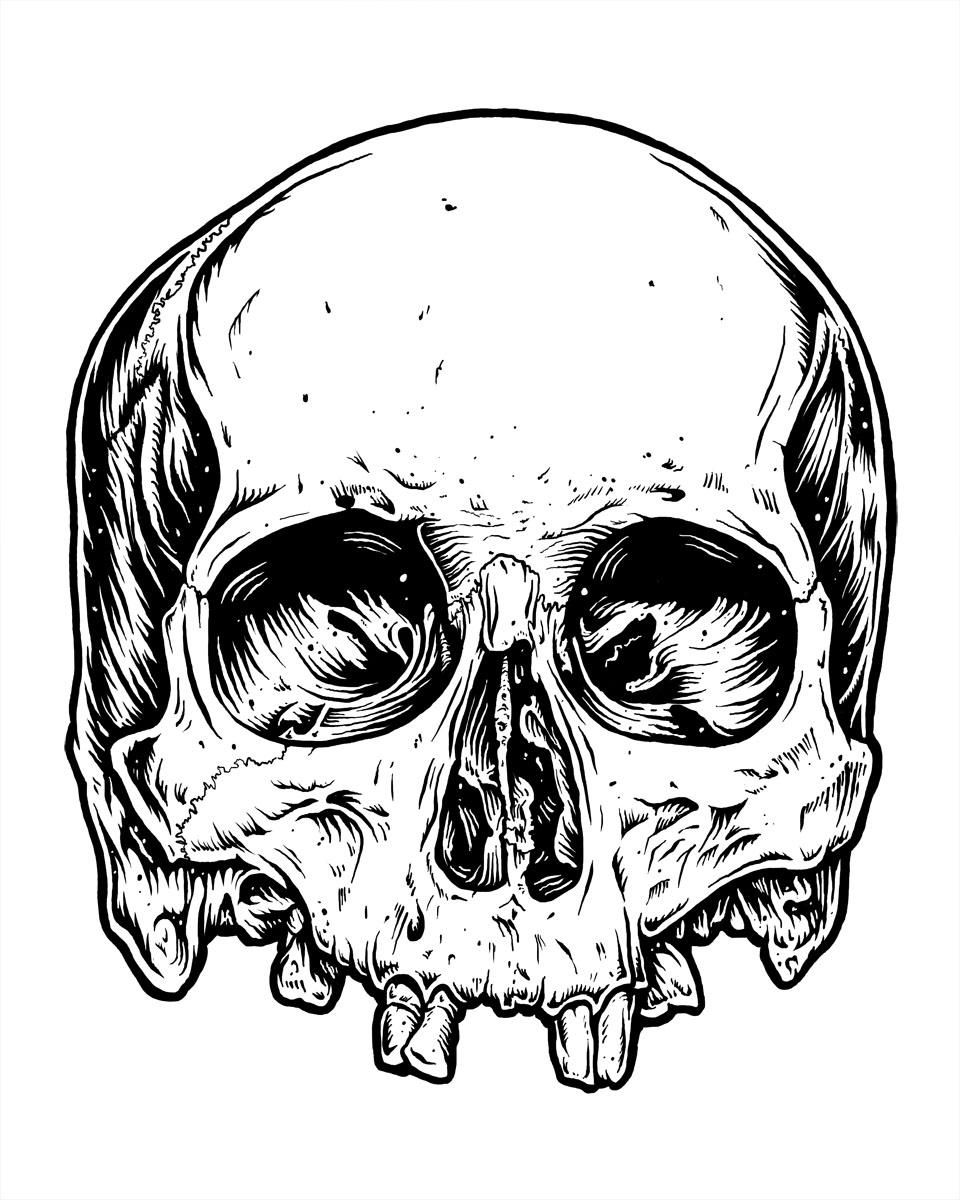 skully - image 2 - student project