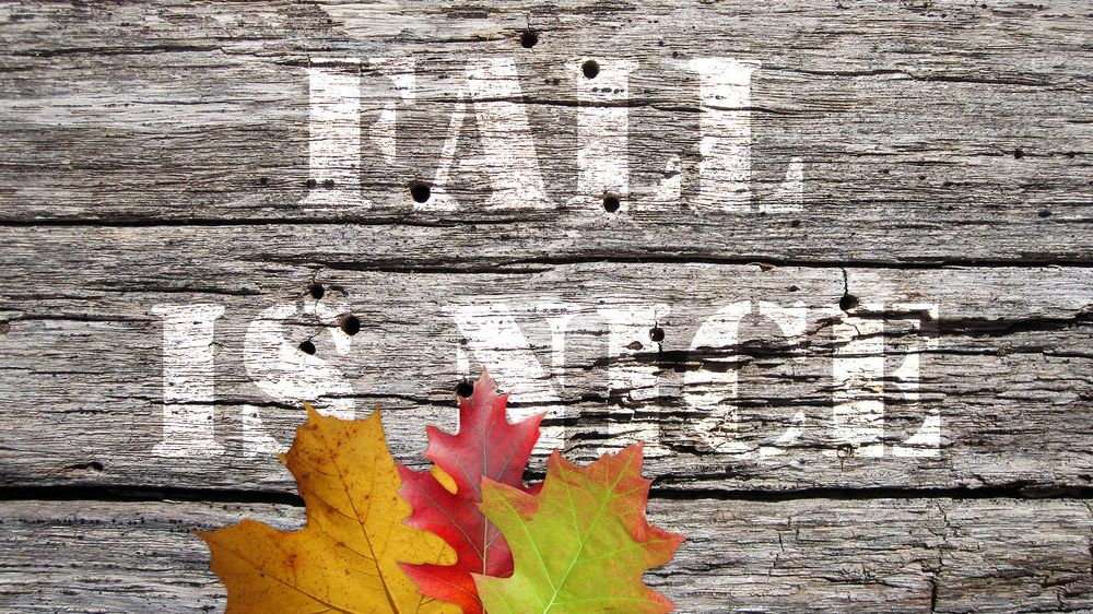 Fall is Nice (Sample Project) - image 4 - student project