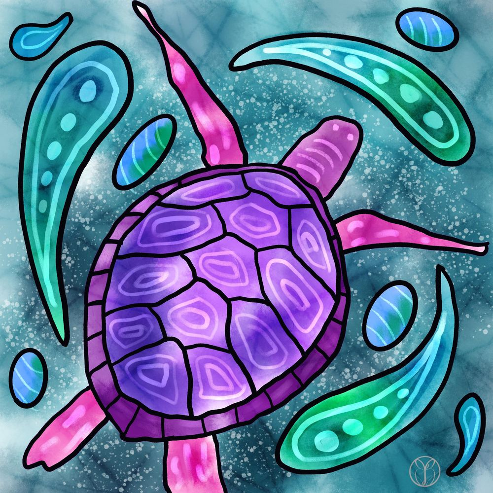 My Turtle - image 1 - student project