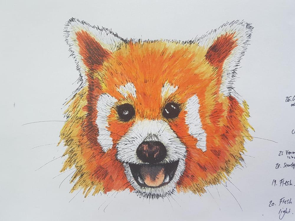 Red Panda, Blue Grosbeak, Chameleon - image 5 - student project