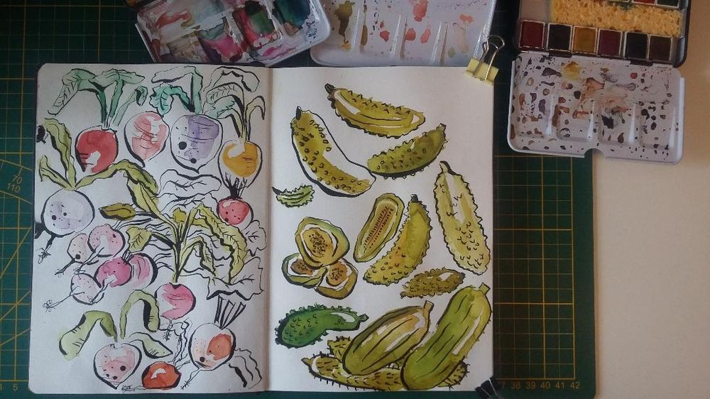 Sketchbook Practice : Create Freely with Ink and Watercolor - image 1 - student project