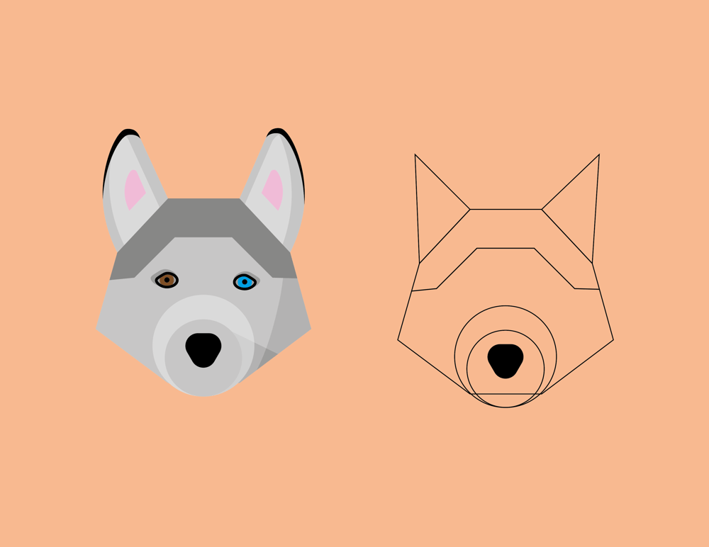 Dog - image 1 - student project